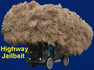 Highway Jailbait!  Farm vehicles crawl down the middle of the road, but if you pass them you get ticketed
