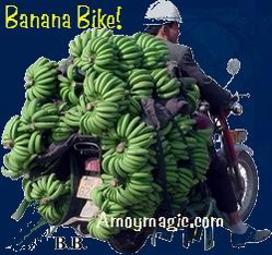 Banana Bike--hundreds of pounds of bananas on this motorcycle!  Amoy Magic--Guide to Xiamen and Fujian.  Http://www.amoymagic.com