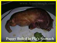 Puppy boiled in pig's stomach