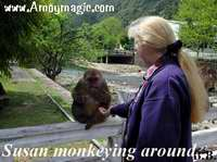 Sue monkeying around with the monkeys at the Wuyi Mountain Natural Preservation Area